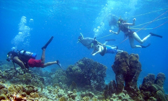 Introduction Scuba Diving Course (snuba) In Sihanoukville