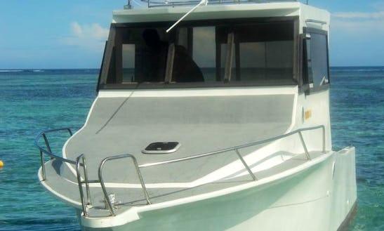 Charter 28' Nirvana Cuddy Cabin In Flic En Flac, Mauritius