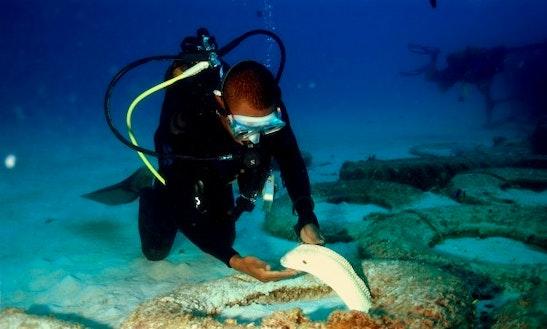 Enjoy Diving In Trou-aux-biches, Mauritius