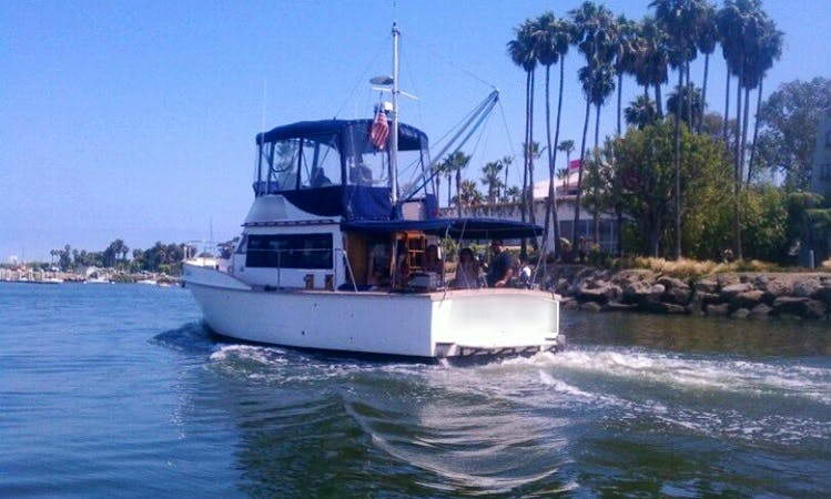 """""""Island Trader"""" Private Charter Cruises and Bed N Boat in Long Beach, Ca"""