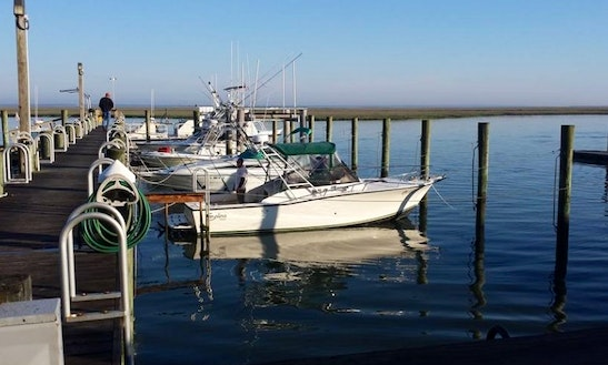 Enjoy Fishing In Brigantine, New Jersey With Captain Jim