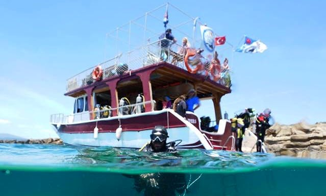 Enjoy Diving in İzmir, Turkey
