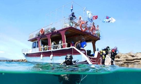 Enjoy Diving In İzmir, Turkey