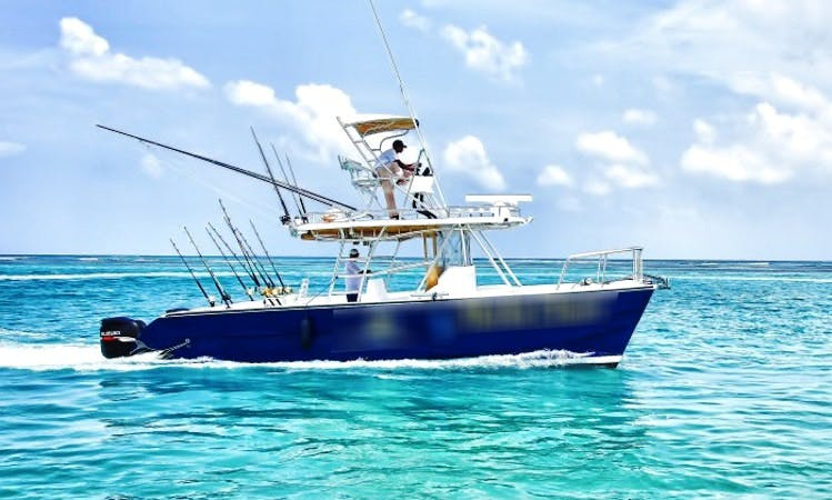 31' Power Cat Charter for Fun Fishing Trip, Cruising and More!