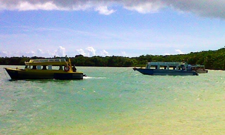 Wildlife Tours in Buccoo, Tobago