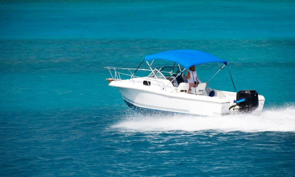 Book a Private Boat Day for a Tour of Muğla, Turkey