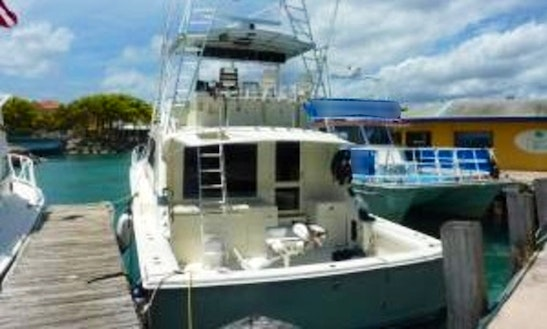54' Bertram Sport Fisherman