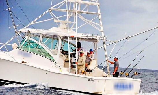 Enjoy Fishing In Willemstad, Curacao On 38' Sportfisherman