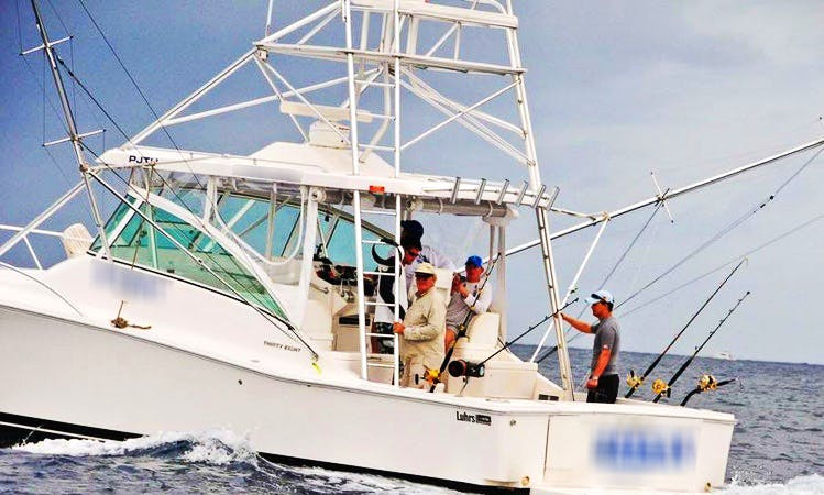 Memorable Fishing Excursion in Willemstad, Curacao on 38' Sportfisherman
