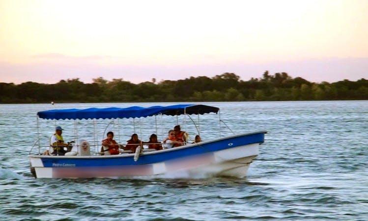 Boat Cruises In Corrientes, Argentina
