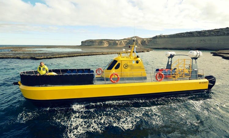 "Charter a 56' ""Yellow Submarine"" in Chubut Argentina"