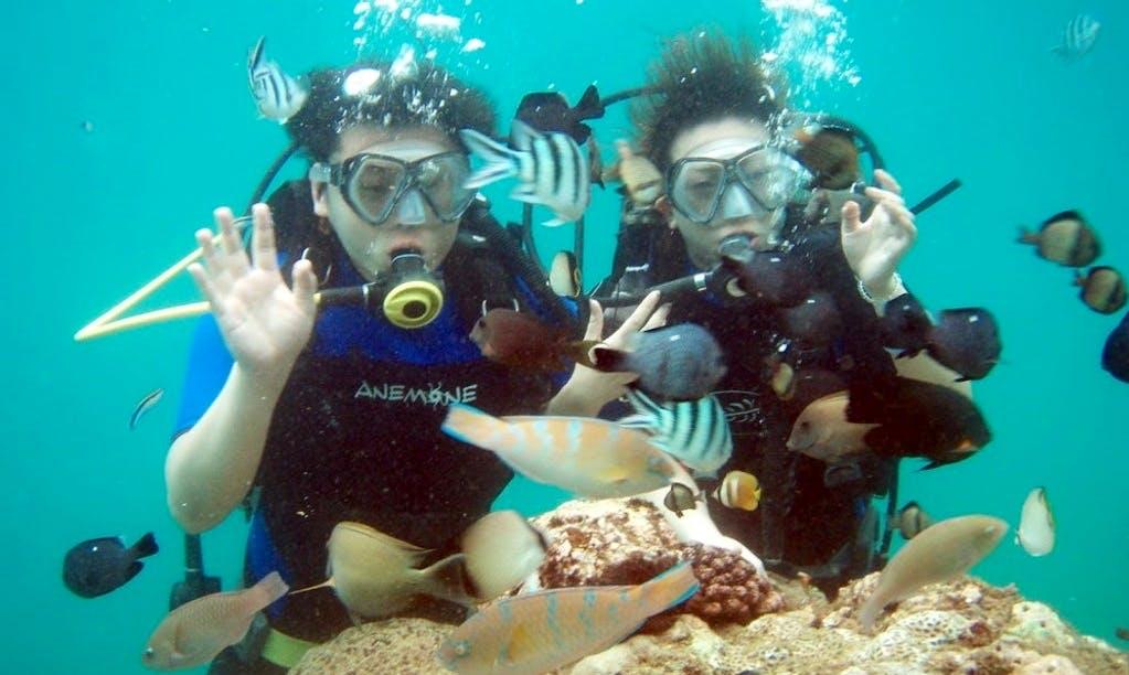 Enjoy Scuba Diving Pleasure in Bali, Indonesia