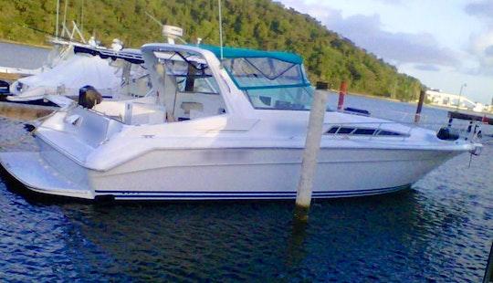 Charter 42ft