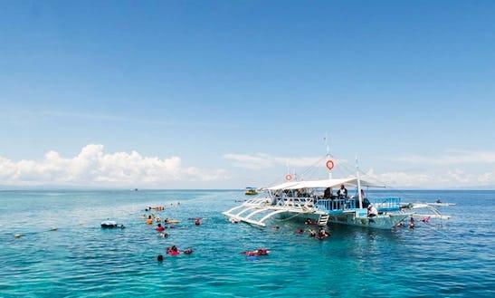 Enjoy Diving In Cebu City, Philippines