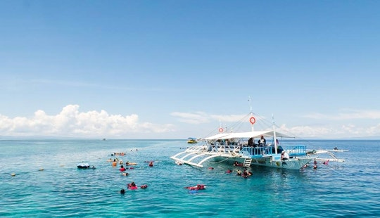 Enjoy Diving In Cebu City, Philippines
