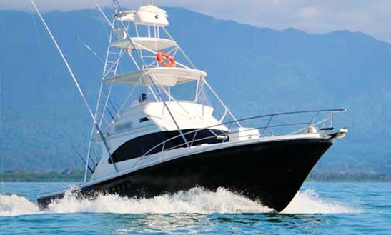 Enjoy Fishing In Port Douglas, Queensland On 40' Sport Fisherman