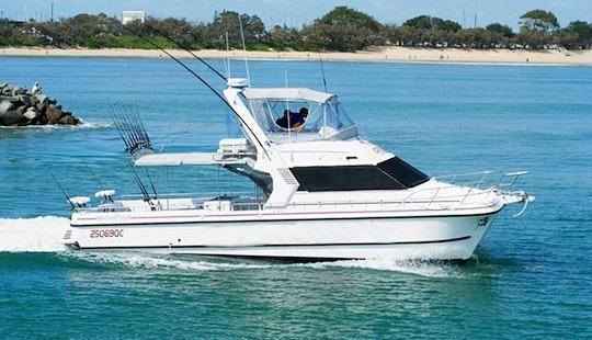 Mooloolaba Fishing Charter On 44ft