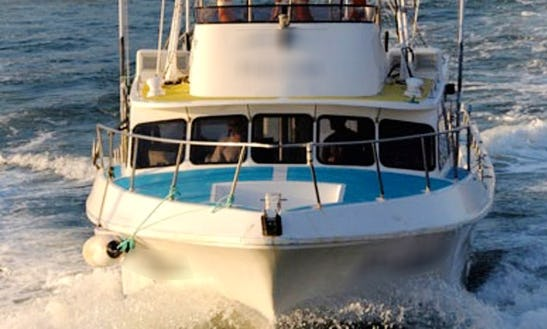 Sydney Harbour Fishing Charter With Captain Davis