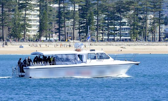 'sealife V' Boat Diving Trips In Coogee