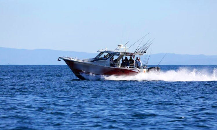 """33ft """"Firebird"""" Fishing Charter from Manly, Australia"""