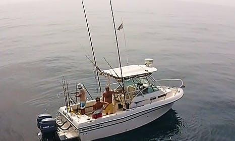 Enjoy Fishing in Lagos, Nigeria on 23' Grady White 232 Gulfstream Cuddy Cabin