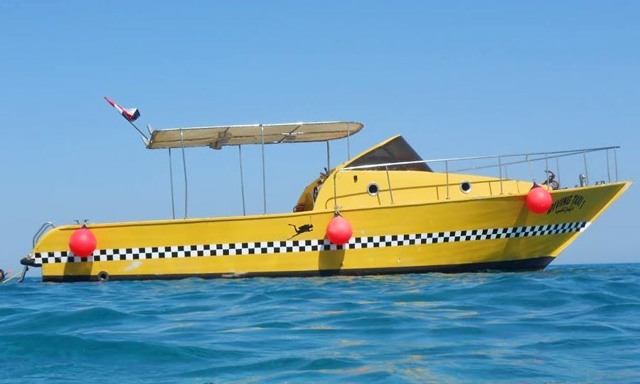 Enjoy Fishing in Red Sea Governorate, Egypt on Cuddy Cabin