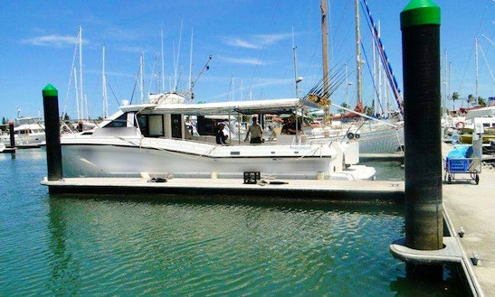 Deep Sea Fishing Charter In Mooloolaba