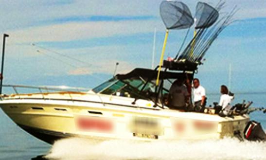 31' Sea Ray Boat Fishing Charters In Haldimand