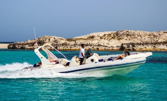 Charter Marlin 26 - Itaca Rib In Ibiza