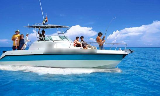 Enjoy Fishing In Dubai, United Arab Emirates On 33' Sport Fisherman