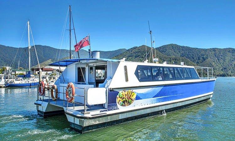 """MV Spirit"" Cruising in Marlborough, New Zealand"