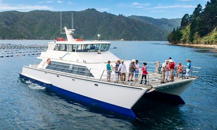 """""""MV Odyssea"""" Cruising in Marlborough, New Zealand"""