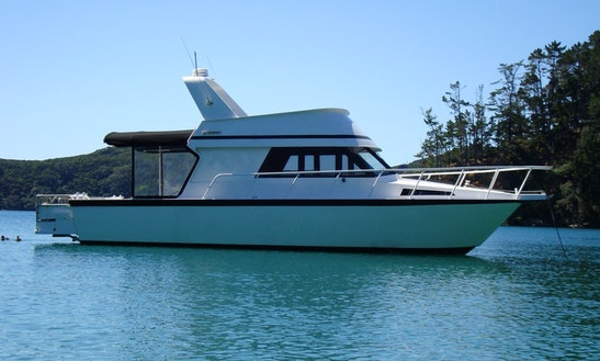 Fishing Charters & Party Cruises On 36' Sport Cruiser In Auckland