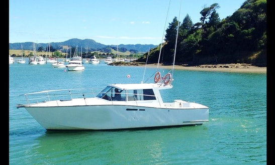 Charter 36' Sport Fisherman In Sandspit, New Zealand