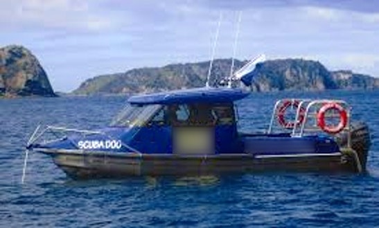 Deck Boat Rental In Tairua