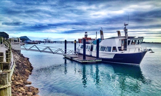 'bay Explorer' Boat Scenic & Corporate Cruises In Tauranga