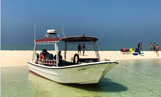 Charter A Passenger Boat In Muharraq Governorate, Bahrain