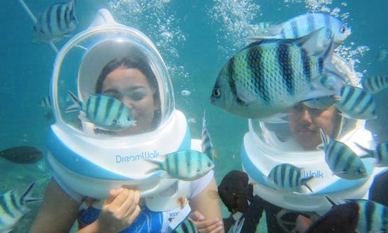 Enjoy Underwater Sea Walking In Denpasar Selatan, Indonesia