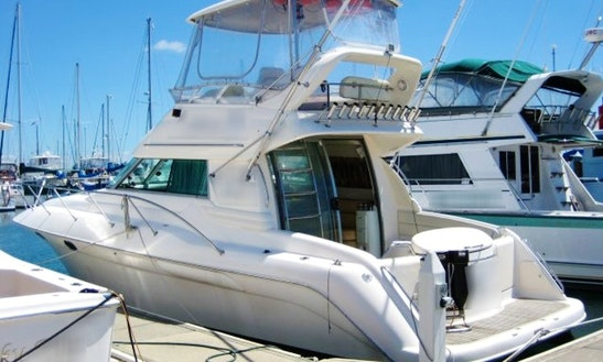 Motor Yacht Charter In Tauranga