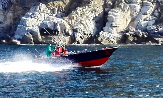 Inshore Fishing Trip In Cape Town, South Africa On A Center Console