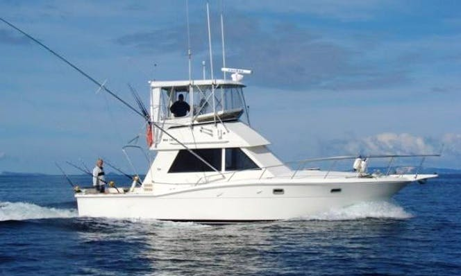 "Fishing Charter On 30ft ""Tiger"" Chris Craft Sportfisher Yacht In Mombasa, Kenya"