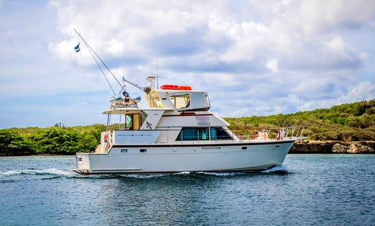 Charter A Motor Yacht In Willemstad, Curacao