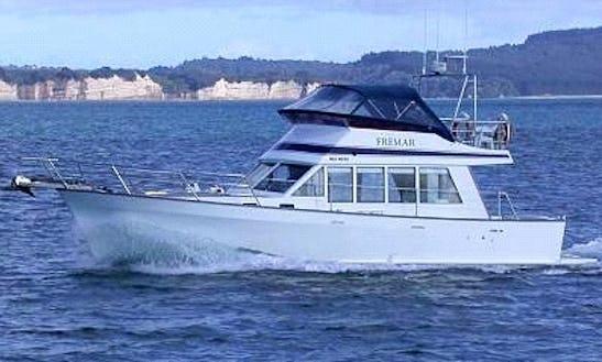 Enjoy Fishing In Whangaparaoa, New Zealand On 28' Seaglass Sports Fisherman
