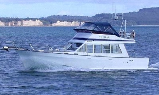 Enjoy Fishing In Whangaparaoa, New Zealand On 28' Seaglass Sports Fisherman