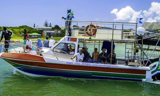 36' Shark Diving Boat In Gansbaai