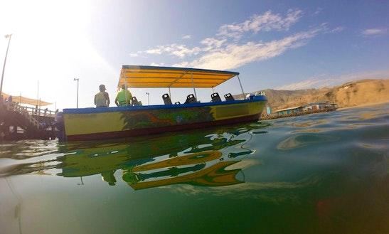 Wildlife Trip Boat In Mancora, Peru