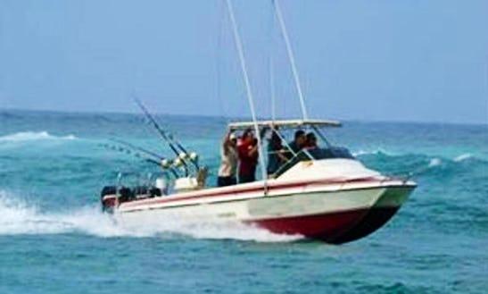 Game Fishing And Marlin Fishing Charter In Kwazulu-natal, South Africa