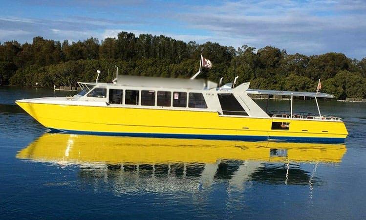 59' Catamaran Boat Hire In Laurieton