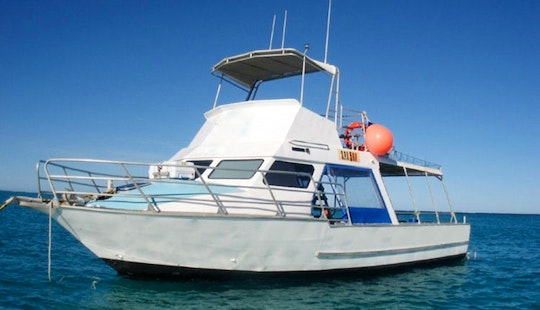 Diving Tour & Courses In Coral Bay