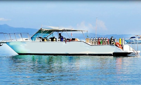 Discover Scuba Diving Program (baptism) In Florianópolis, Brazil